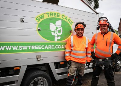 local-tree-specialists-sw-tree-care